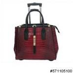 Travel/Office Bag